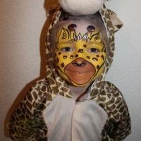 Kinderschminken Fasching buchen (24)