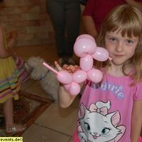 ballon-kuenstler-buchen-1-jpg