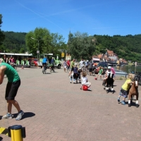 Animal Riding, Lebendiger Neckar Hirschhorn 2017 (10)