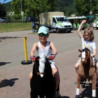 Animal Riding, Lebendiger Neckar Hirschhorn 2017 (2)