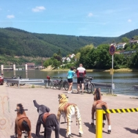 Animal Riding, Lebendiger Neckar Hirschhorn 2017 (28)