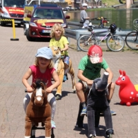 Animal Riding, Lebendiger Neckar Hirschhorn 2017 (3)