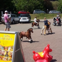 Animal Riding, Lebendiger Neckar Hirschhorn 2017 (30)