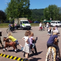 Animal Riding, Lebendiger Neckar Hirschhorn 2017 (33)
