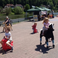 Animal Riding, Lebendiger Neckar Hirschhorn 2017 (35)